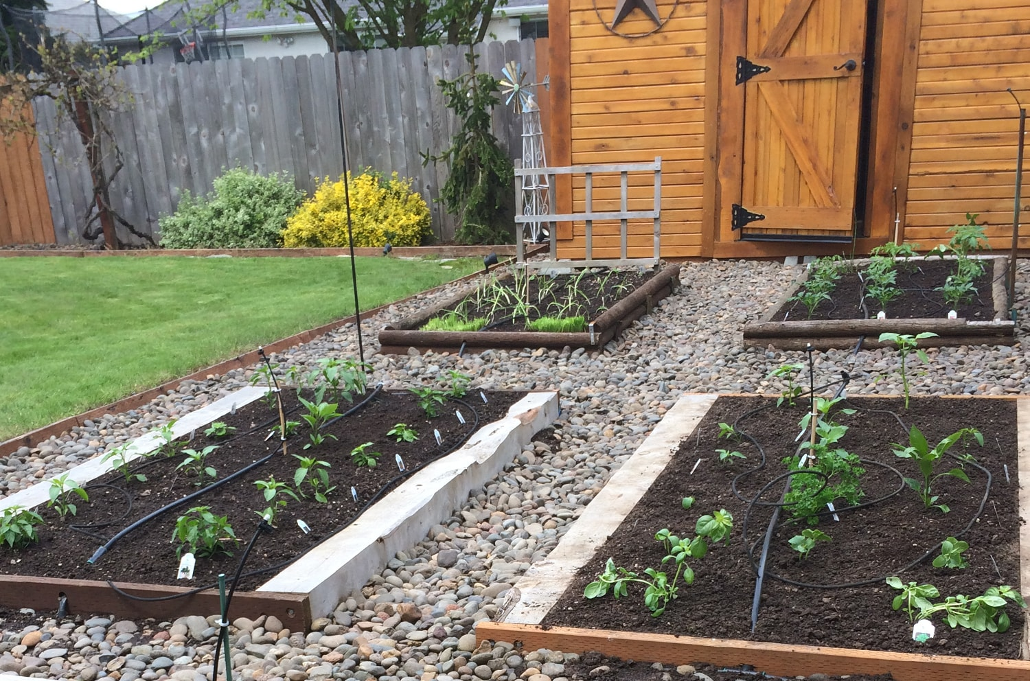 5 Things Every Raised Bed Gardener Should Know Blog