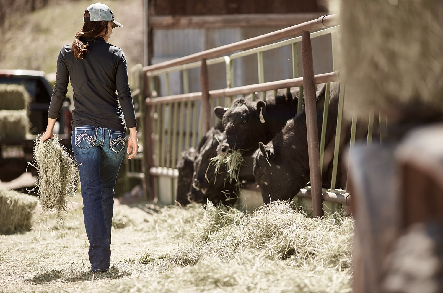 Ariat Supports Youth in FFA