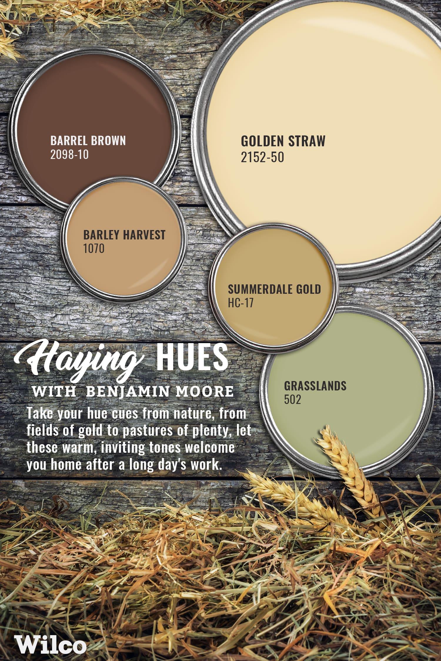 Haying Hues Benjamin Moore Paint Palette Blog