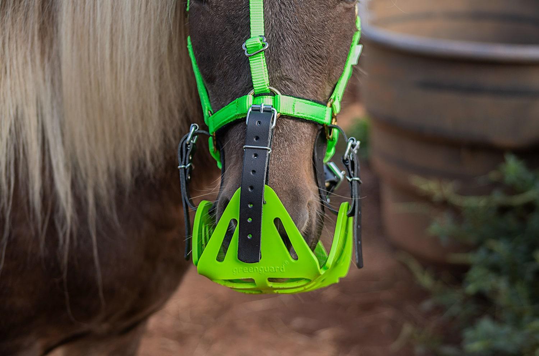 Green Guard Muzzle Blog