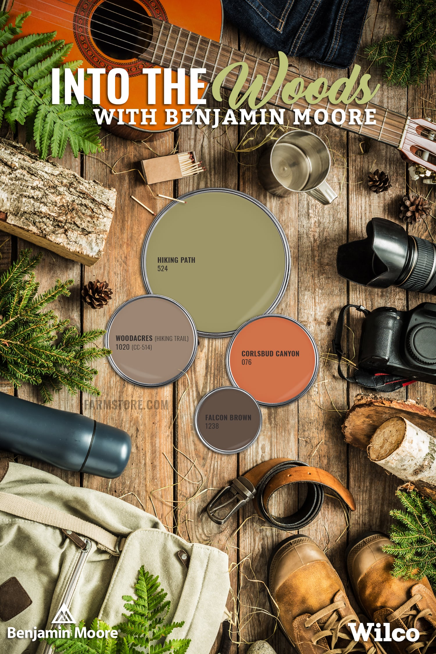 Into the Woods with Benjamin Moore Paint Palette