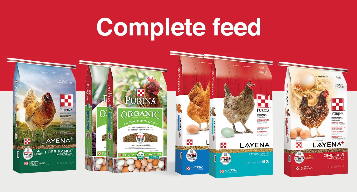 Purina Complete Poultry Feed