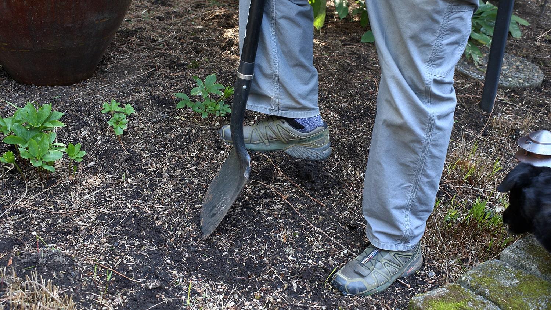 Soil Test Kit 1 - Feature Image Blog