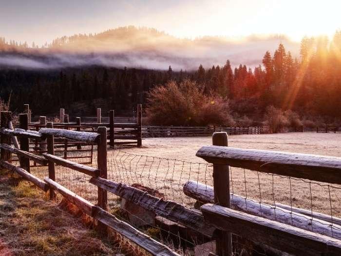 wooden fence sunrise