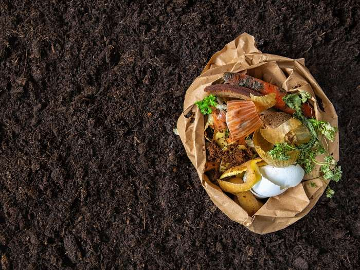 compost and soil