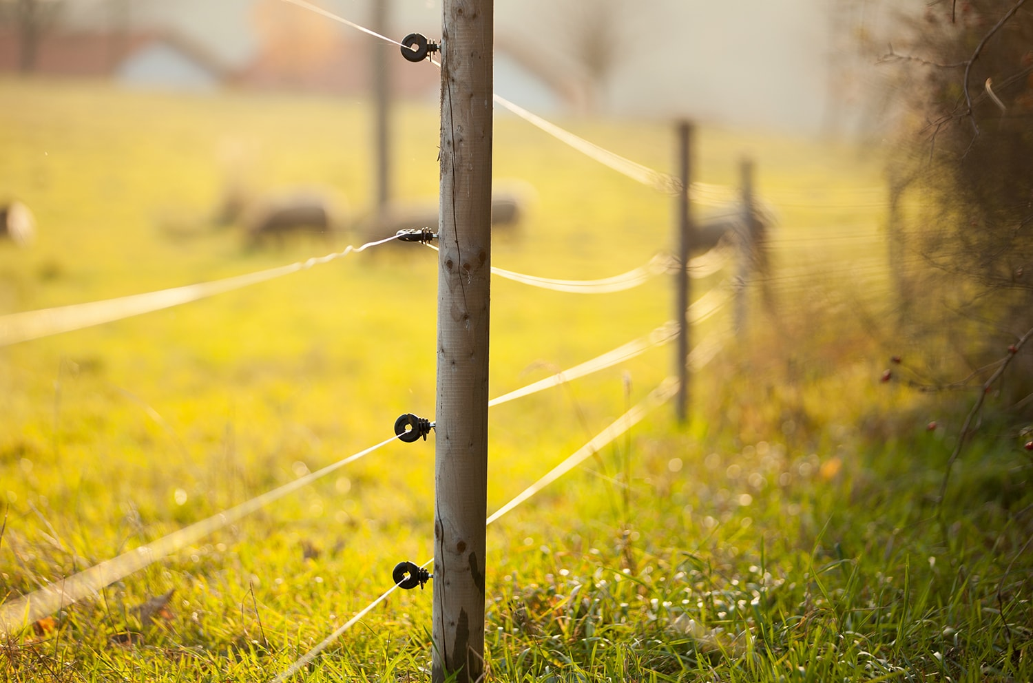 Why Electric Fence Blog