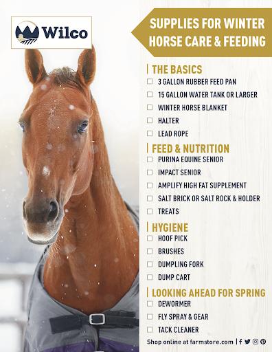 Winter-Horse-Care-Checklist